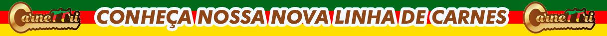 Banner-Farroupilha-Peq-PNG